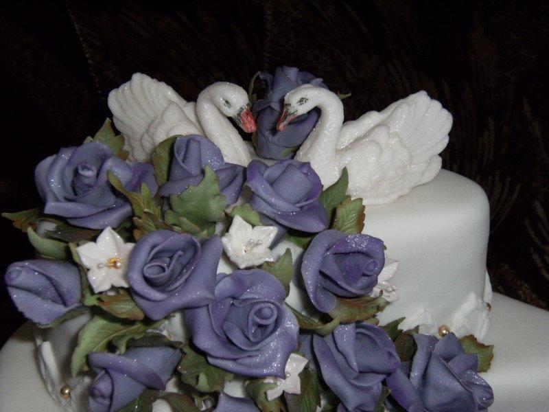 Labutě na sv.dortu